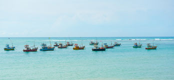 Lots of fishing boats in Weligama bay Royalty Free Stock Photo