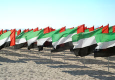 Lots of flags United Arab Emirates for the anniversary celebration. UAE Natoinal day. UAE Flag. Stock Images
