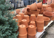 Lots of flower pots selling at store Stock Photos