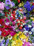 Lots of flowers. With different colors are for sale in one of the flower shops in Metro Manila Royalty Free Stock Photos
