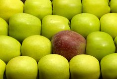 Lots of fresh apples Royalty Free Stock Image