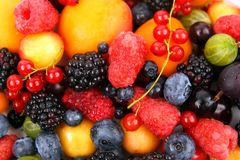 Lots of fresh different berries Royalty Free Stock Image