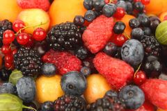 Lots of fresh different berries Stock Images