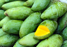 Lots of fresh green mango Royalty Free Stock Images