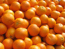 Lots of fresh oranges fruit close up. Royalty Free Stock Photos