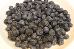 Blueberries closeup. royalty free stock photo