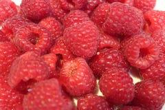 Raspberries closeup. royalty free stock images
