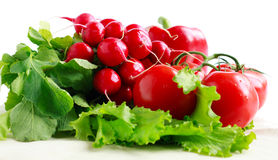 Lots of fresh vegetables: radish, tomato, pepper. Healthy vegetarian food Royalty Free Stock Images