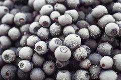 Lots of of frozen blueberries Royalty Free Stock Images