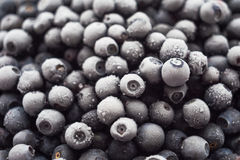 Lots of of frozen blueberries Stock Photos