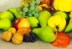 Lots of fruits on the wooden desk. Autumn fruit composition view from the top. helthy and natural food royalty free stock photo