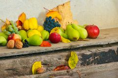 Lots of fruits on the wooden desk. Autumn harvest background. lots of fruits on the wooden desk royalty free stock photos