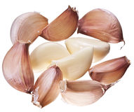 Lots of garlic cloves. Stock Photo