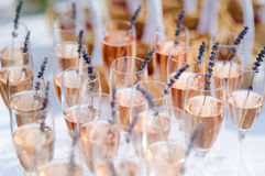 Lots of glasses filled with pink champagne Royalty Free Stock Photography
