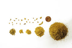 Lots of glitter and alluvial gold nuggets Stock Images