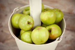 Lots of green apples in the pail Stock Photos