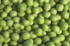 Lots of green peas Royalty Free Stock Photo