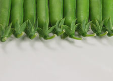 Lots of green peas royalty free stock images