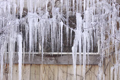 Lots of Icicles Stock Photos