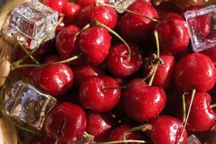 Lots of juicy cherries with ice stock photography