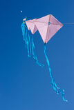 Lots of kites in the sky Royalty Free Stock Photo