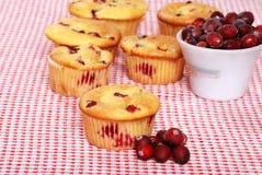 Lots Of Lemon Cranberry Muffins Stock Photos