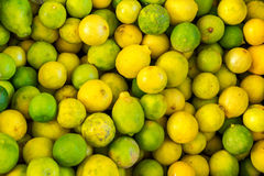 Lots of lemons. Lots of yellow lemons and green limes Royalty Free Stock Image