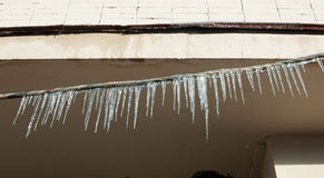 Lots of melting icicles Royalty Free Stock Photos