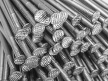 Lots of nails Stock Photography