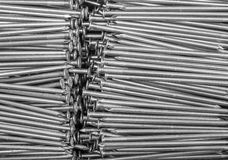 Lots of nails Stock Images