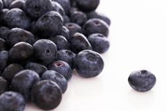 Free Lots Of Blueberries Royalty Free Stock Photos - 45040358