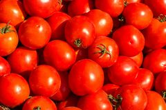 Free Lots Of Red Tomatoes Beautiful Background View From The Top Royalty Free Stock Images - 127320779