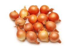 Lots of onions isolated on whi Royalty Free Stock Photography