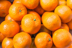 Lots of oranges Royalty Free Stock Images