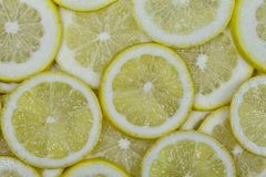 Lots of organic lemons cut into slices Royalty Free Stock Images