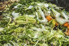 Lots of organic waste trash. Lots of organic waste on a big heap Royalty Free Stock Images