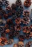 Lots of pinecones Stock Images
