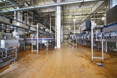 Lots of pipes and conveyers with milk bottles Royalty Free Stock Photos