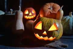 Lots of pumpkins in dark forest. two halloween pumpkins. Jack face Royalty Free Stock Image