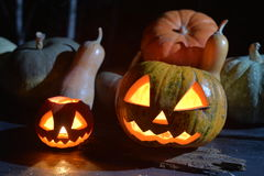 Lots of pumpkins in dark forest. two halloween pumpkins. Jack face Royalty Free Stock Photos