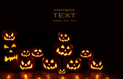 Lots of pumpkins lit brightly Stock Photography