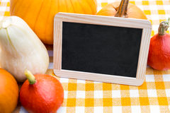 Lots of Pumpkins and Slate with Copyspace. On a yellow chequers tablecloth Royalty Free Stock Photo