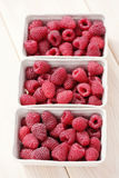 Lots of raspberries Royalty Free Stock Photos
