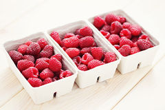 Lots of raspberries Royalty Free Stock Photo