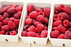 Lots of raspberries Royalty Free Stock Photography