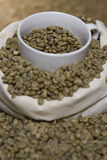 Lots of raw coffee beans Royalty Free Stock Image