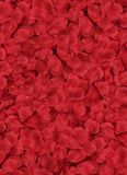 Lots of red petals laying on a floor Royalty Free Stock Image