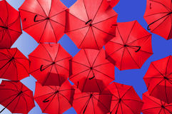 Lots of red umbrellas  on blue sky Stock Photos