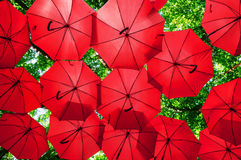 Lots of red umbrellas coloring the forest Royalty Free Stock Photos