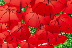 Lots of red umbrellas coloring the green forest Stock Photos